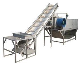China 1200kg/H Large Capacity Garlic Separating Machine Garlic Powder Production Lline supplier